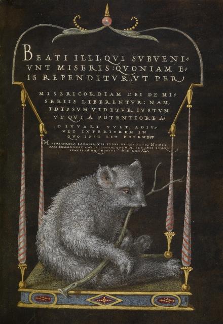 A Sloth (Hoefnagel and Bocskay (1561)